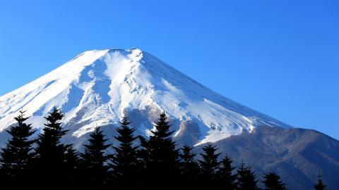 1 Day Mt.Fuji and Hakone Tour